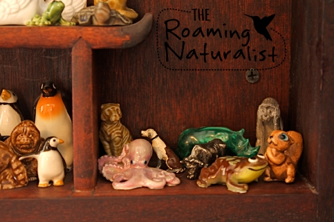 Some of my favorites include a malachite rhinoceros, an iron dog, and a ceramic squirrel from Japan.