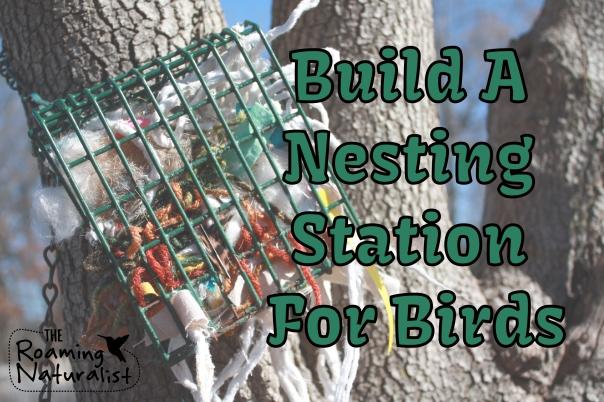 nesting materials